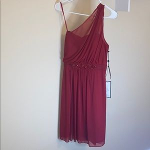 Adrianna Papell Cherry One Shoulder Tule Dress
